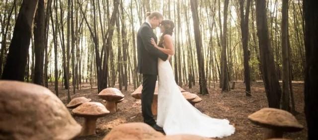 ENZOANI新娘 | 在天然森林里演绎永恒的优雅